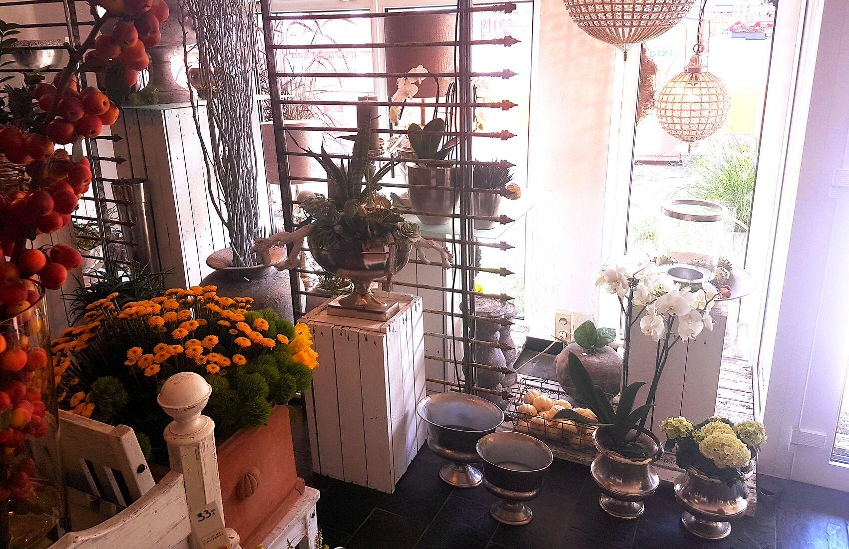 Verschiedene Blumen zur Dekoration des Innenbereichs